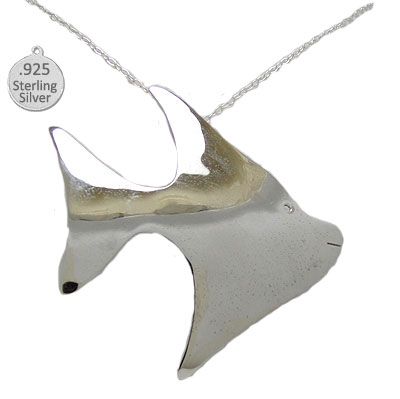 Sterling Silver Fish Pendant & Chain