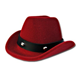 Cowboy Hat Ring Tie Tac Earring Box
